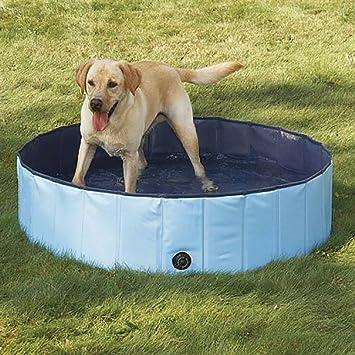 Amazoncom Dog Bathtub PYRUS 473 x 118 Inches Collapsible Pet