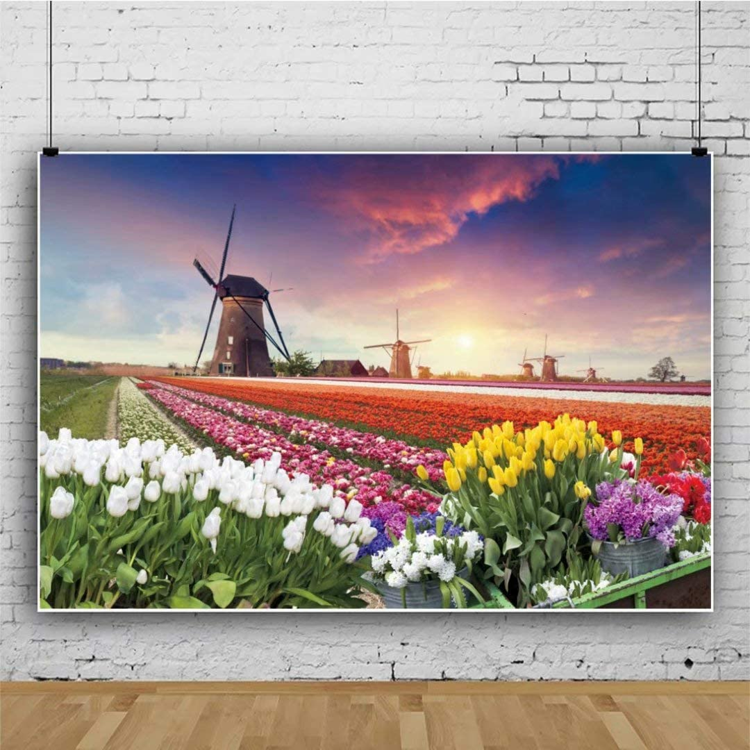 DaShan 10x8ft Netherlands Tulips Windmills Backdrop Holland Wedding Girl Birthday Party Photography Background Outdoor Travel Leisure Holiday Tourist Lover YouTube Portrait Photo Studio Props
