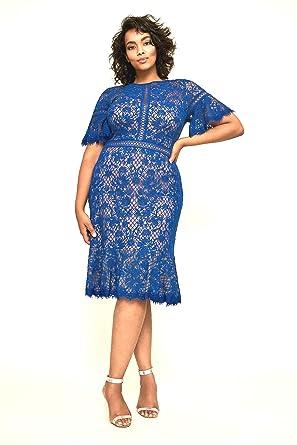 Tadashi Shoji Women\'s Mirabelle Embroidered Dress Plus at Amazon ...