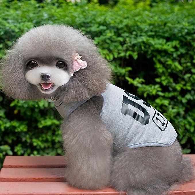 Amazon.com : DealMux camisa do cão dos EUA 1776 roupas para ...