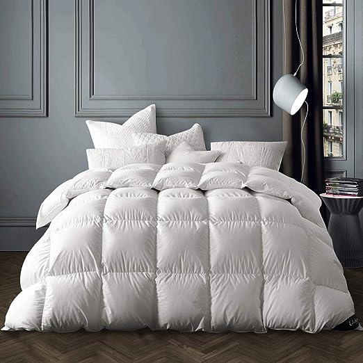 Amazon Com Globon Winter White Goose Down Comforter King Size