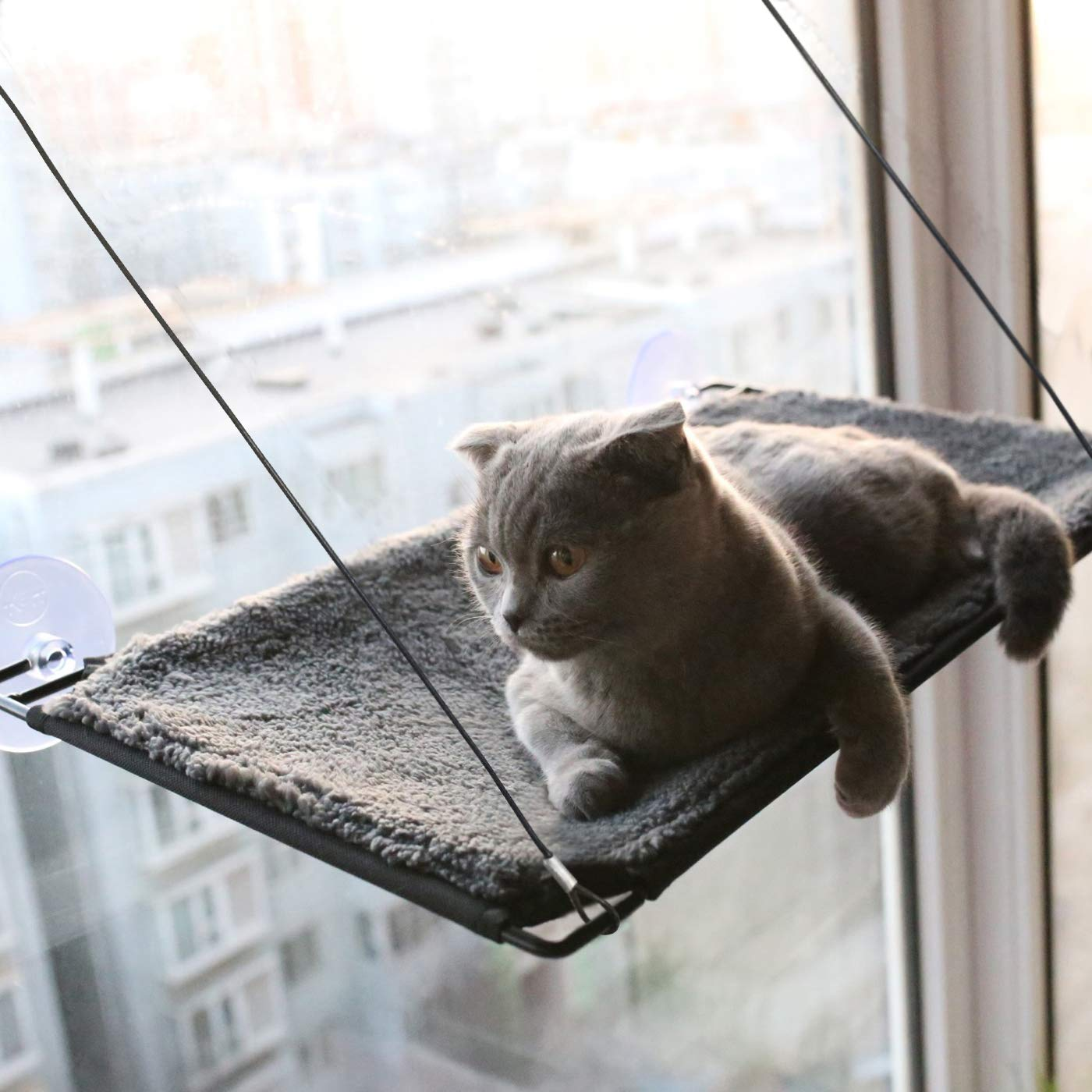 BobbyPet Cat Window Perch Warm Cotton Fabric - Single Layer 12''x22.8'' EXTERMELY Durable Suction Cups can Holds Huge Cats Easy Set up Within 5 Minutes by BobbyPet