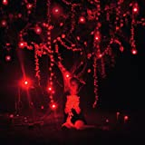 The Danger of Light (+CD) [Vinyl LP]