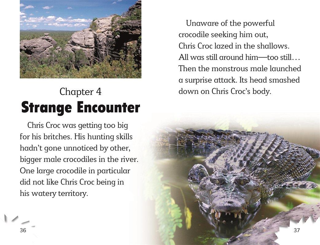DK Readers L3: Snappy Crocodile Tale by DK Children (Image #4)