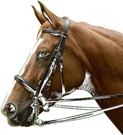 Exselle Dressage//Eventing Bridle