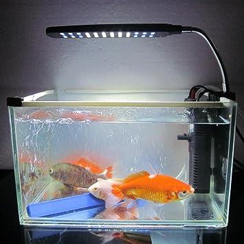Acuario Pecera Agua Planta Clip de 48 LED de 3 W de luz Iluminación Lámpara 2 modos de trabajo blanco y azul Flexible: Amazon.es: Productos para mascotas