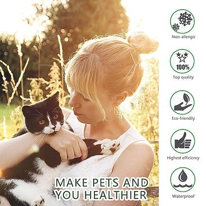 Dewel Collar Antiparasitos para Perro,Gato Pequeño Mediano Grandes contra Pulgas, Garrapatas y Mosquitos, 8 Meses (para Gatos): Amazon.es: Productos para ...