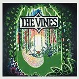 Hives Veni Vidi Vicious Amazon Com Music