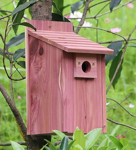 3 NEW CEDAR BLUEBIRD HOUSES BLUE BIRD HOUSE BIRDHOUSE
