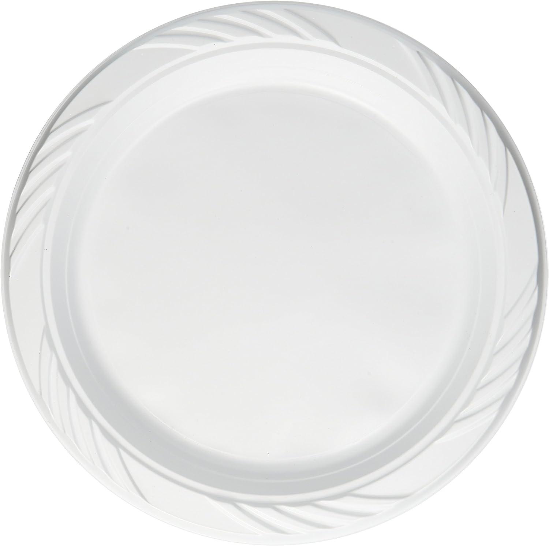 Amazon.com: Cielo azul de plástico desechables platos 9 inch ...