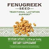Nature's Way Fenugreek Seed, 1,220 mg per