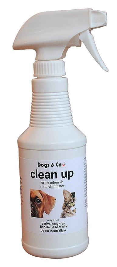 Perros & Co limpiar de orina eliminador de olores y manchas