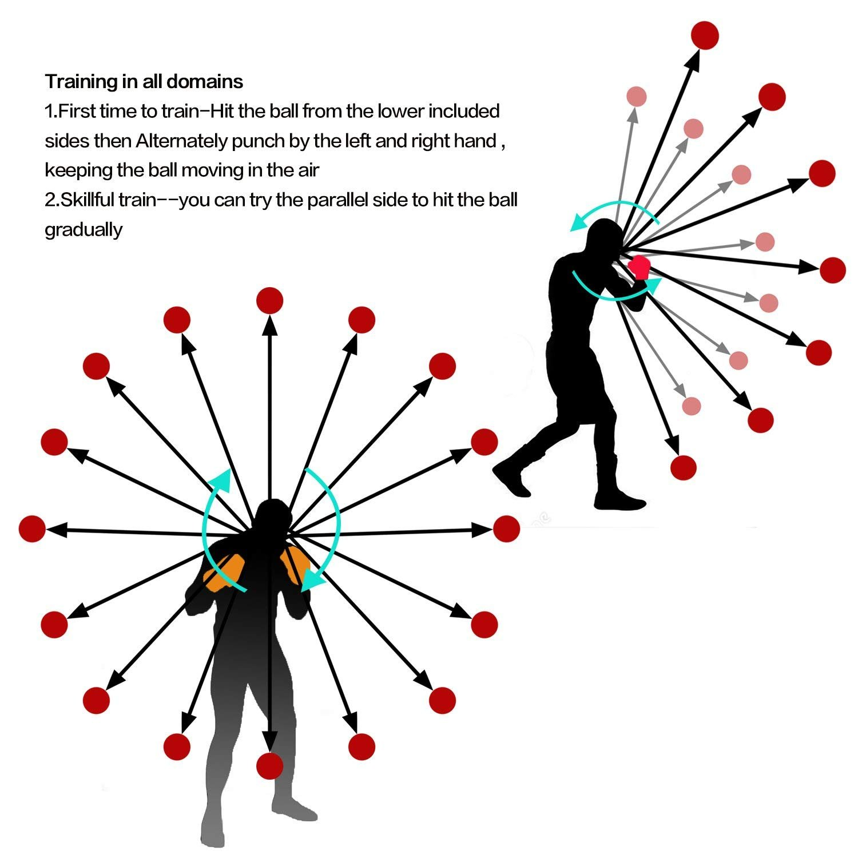Zomaple Boxing Reflex Ball, Punching Ball, Speed Ball, Fight Ball Hand Eye Coordination Training - Head Ball, Egg Weights Boxing, Spar Bar Boxing Set Includes Non-Sweat Headband & Hand Wraps
