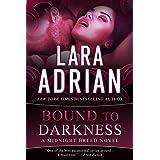 Bound to Darkness (The Midnight Breed Series) (Volume 13)