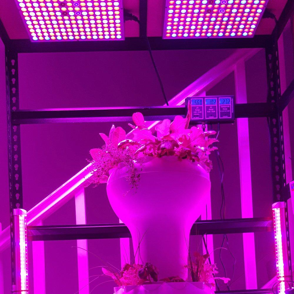 45W LED Grow Light for Indoor Plants Growing Lamp 225 LEDs UV IR Red Blue Full Spectrum Plant Lights Bulb Panel for Hydroponics Greenhouse Seedling Veg and Flower by Venoya by i-Venoya (Image #8)