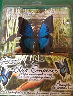 bd65ee9e3538e Amazon.com: Active Aliforms Tropical Skipper Moving Butterfly: Home ...