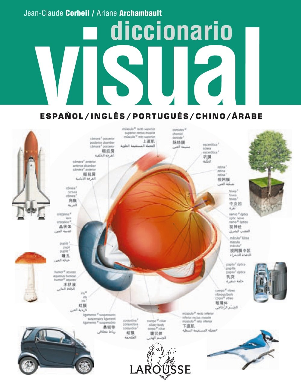 Diccionario Visual: español, inglés, portugués, árabe, chino: 9788480169462: Amazon.com: Books