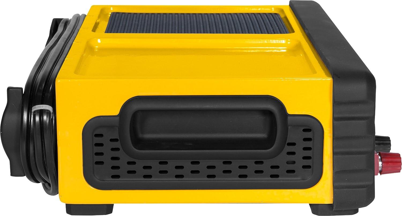 120V AC Outlet Battery Clamps 2 Amp Maintainer 3.1A USB Port DEWALT DXAEC801B 30 Amp Bench Battery Charger: 80 Amp Engine Start