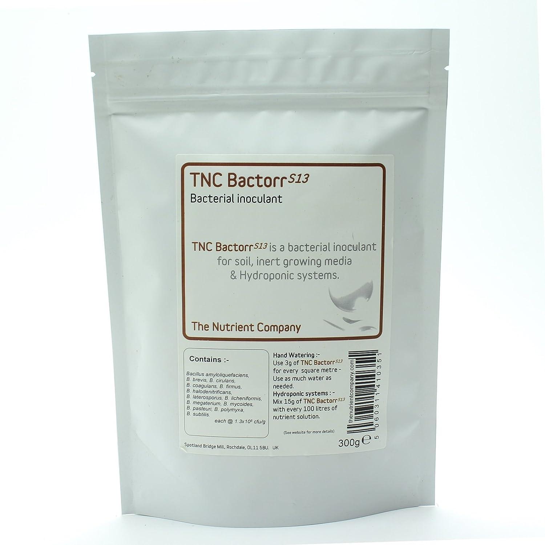 TNC BactorrS13 - bacterias de minerales para Compost de té, de ventilación y horticultura (75g)