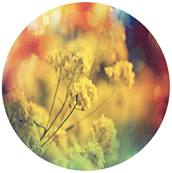Amazon designart mt12495 c23 light little yellow flowers designart mt12495 c23 light little yellow flowers background flower round wall art disc of mightylinksfo
