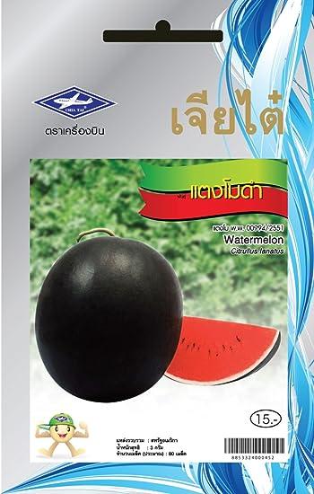 Amazon.com: Chía Tai 80pcs sandía 3 G Tailandia tanatporn ...