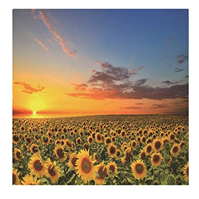 Puzzles for Adults, 1000 Piece Puzzle for Adults Kids Gift - Sunflower Field Landscape Jigsaw Puzzle: Toys & Games [5Bkhe0204658]