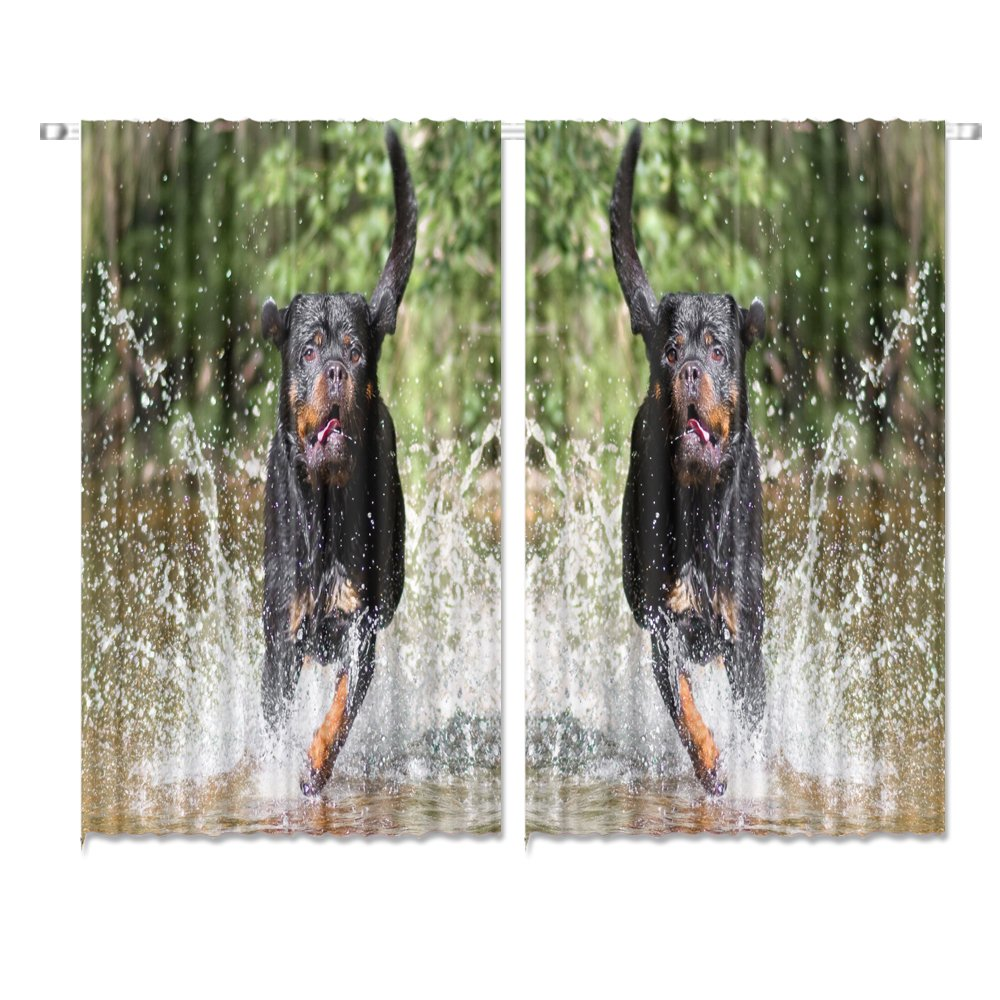 Amazon com hgod designs cute rottweiler puppies running in the waterwindow drapes 2 panel set for kitchen cafe 55 w x 39 l inches home kitchen