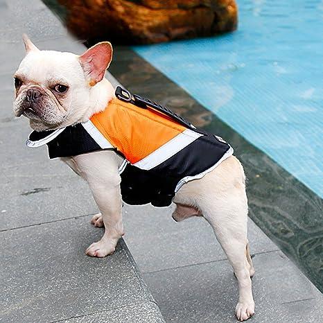 Pet Online Chaleco salvavidas para perros mascota natación profesional chaleco reflectante impermeable, chaleco salvavidas flotador
