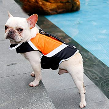 Pet Online Chaleco salvavidas para perros mascota natación profesional chaleco reflectante impermeable, chaleco salvavidas flotador naranja, m: Amazon.es: ...