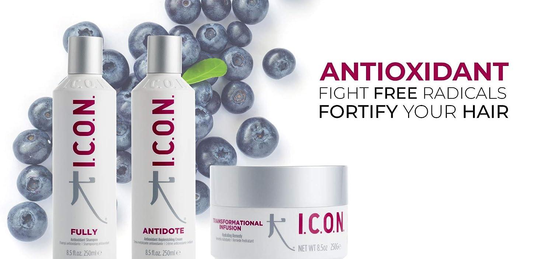 ICON Fully Antioxidant Champú - 250 ml