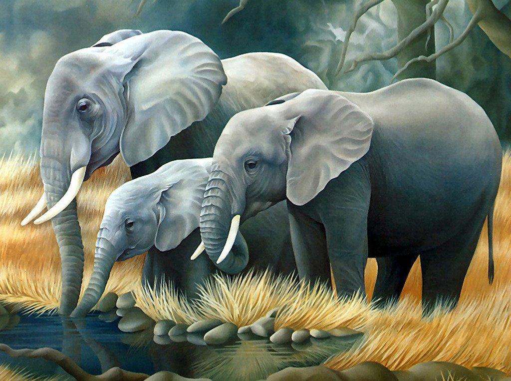 5D Pintura por Diamantes (6281) animal