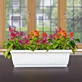 Livewell Green Self Watering Rectangular White Pot 25.3X9.0 Inches - Set Of Four
