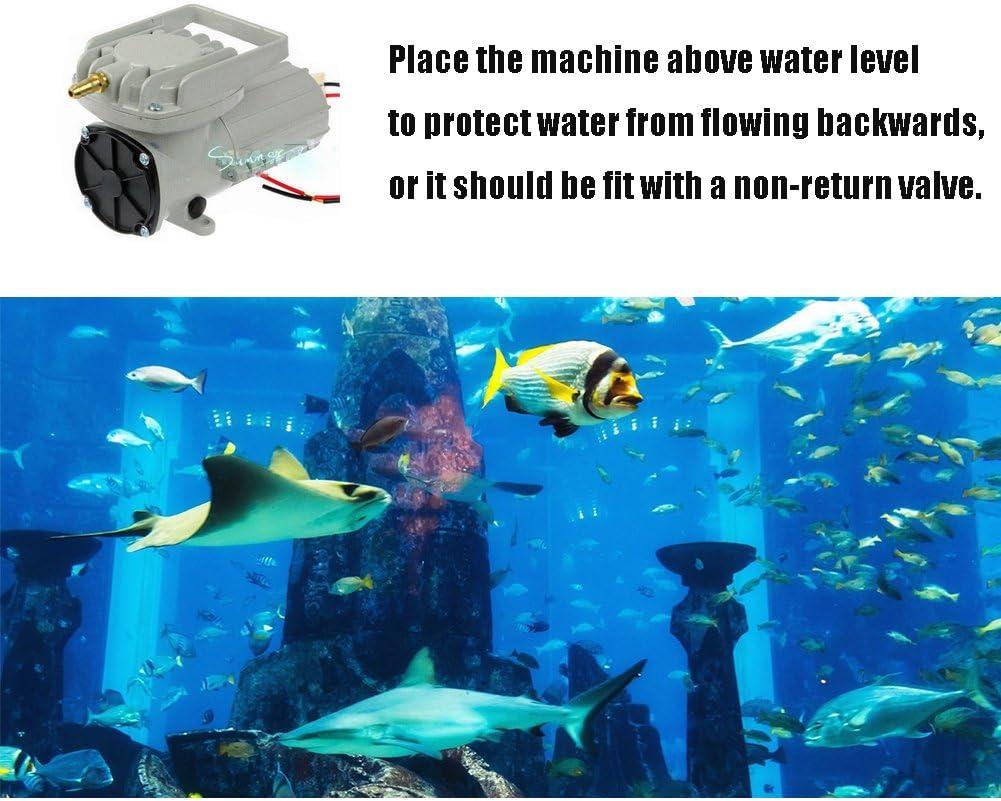 DC 12V Portable Fish Tank Pond Aquaculture Hydroponics Aquarium Air Pump Compressor Aerator 120W 160LPM//Min 2536GPH Oxygen Supplies