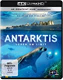 Antarktis - Leben am Limit (4K Ultra HD) [Blu-ray]