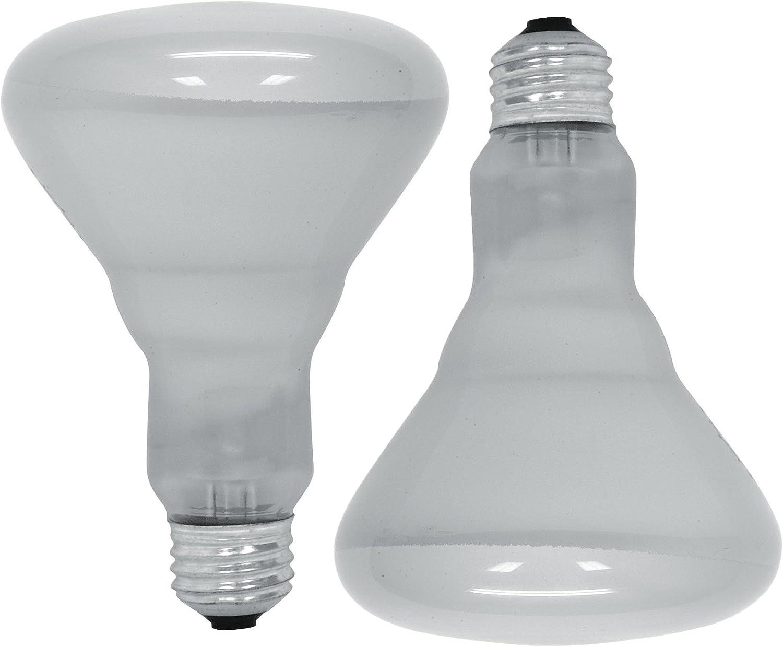 600 Lumen 6 Pack GE Lighting 41936 65W Flood Light