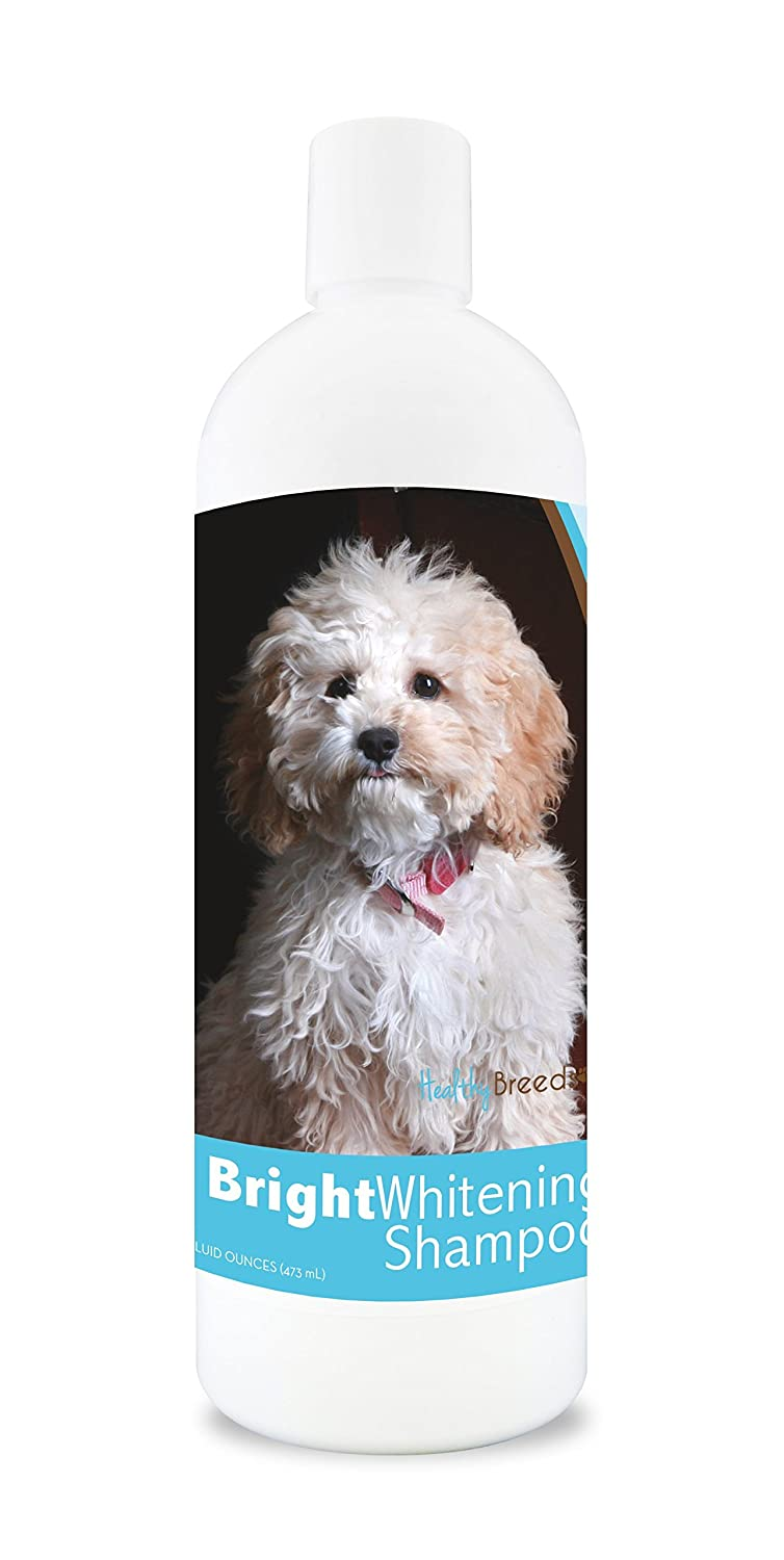 Healthy Breeds Dog Whitener Shampoo for Cockapoo For White, Lighter Fur – OVER 150 BREEDS – 12 oz With Oatmeal For Dry, Itchy, Sensitive, Skin – Moisturizes, Nourishes Coat