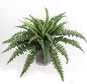 "Larksilk Boston Fern Artificial Plants, UV Resistant, Indoor or Outdoor Plant, Fits in Hanging Basket or Planter, 28"" Inch Diameter, 27 Fronds"