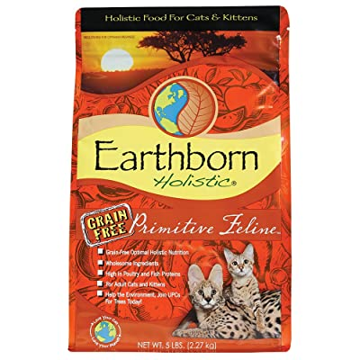 earthborn-holistic-primitive-feline