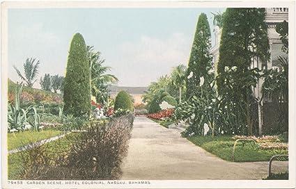 Vintage Postcard Print | Garden Scenes, Hotel Colonial, Nassau, Bahamas, 1898 |