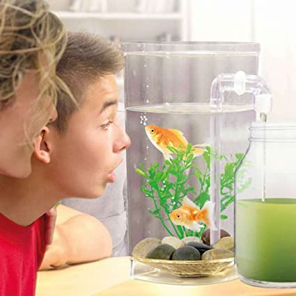 Fish Wonder - Acuario autolimpiable