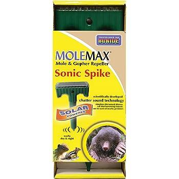 Amazon.com : Bonide 61119 Mole Repellent Stake : Home Pest