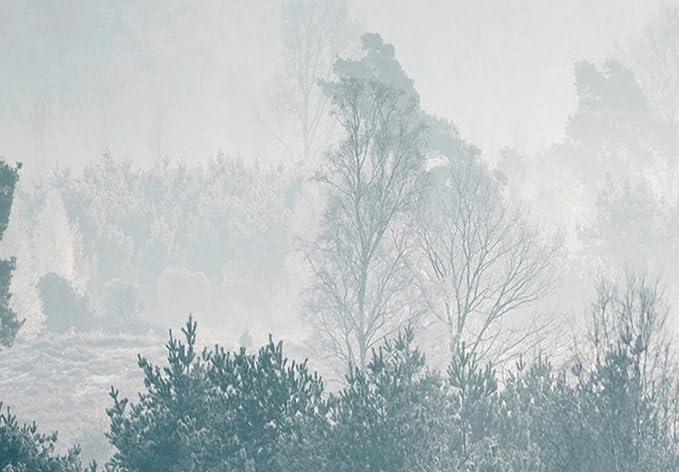murando Cuadro en Lienzo Bosque Niebla 90x60 cm Impresi/ón de 3 Piezas Material Tejido no Tejido Impresi/ón Art/ística Imagen Gr/áfica Decoracion de Pared PaisajeMontanas c-B-0368-b-e