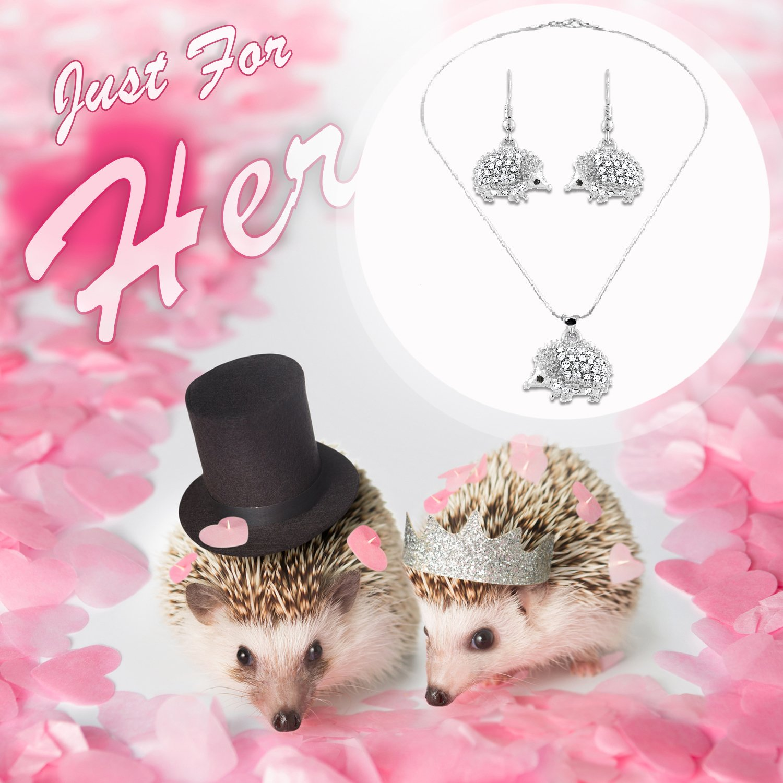 Lola Bella Gifts Femmes Collier en Cristal de h/érisson et Boucles doreilles avec bo/îte-Cadeau