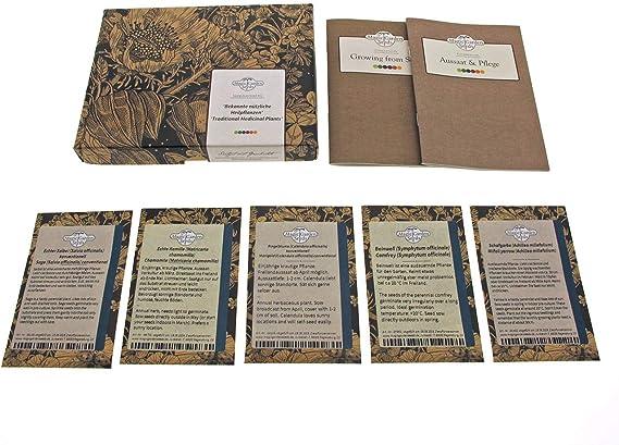 Magic Garden Seeds Plantas medicinales - Kit de Semillas Regalo ...