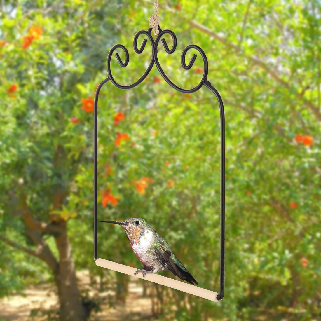 Home-X Hummingbird Swing. Metal Frame Hummingbird Swing with Wooden Dowel SH723