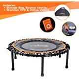 FIT BOUNCE PRO II Bungee Rebounder Already Assembled   Half Folding, Silent & Beautifully Designed Professional Mini Trampoline for Adults & Kids   DVD/Online Workouts, Storage Bag & Bounce Counter