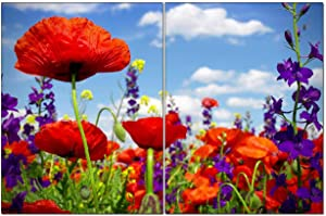 """2 Ps,Canvas Wall Art,Poppy Flower Modern Artwork for Living Room Wall Decor and Home D¨¦cor Framed Ready to Hang 6""""x8"""""""