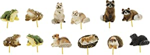 Distinctive Designs Set of 12 Assorted Mini Fairy Garden Figurines 4 Frogs, 3 Squirrels, 2 Raccoons, 2 Hedgehogs & 1 Skunk