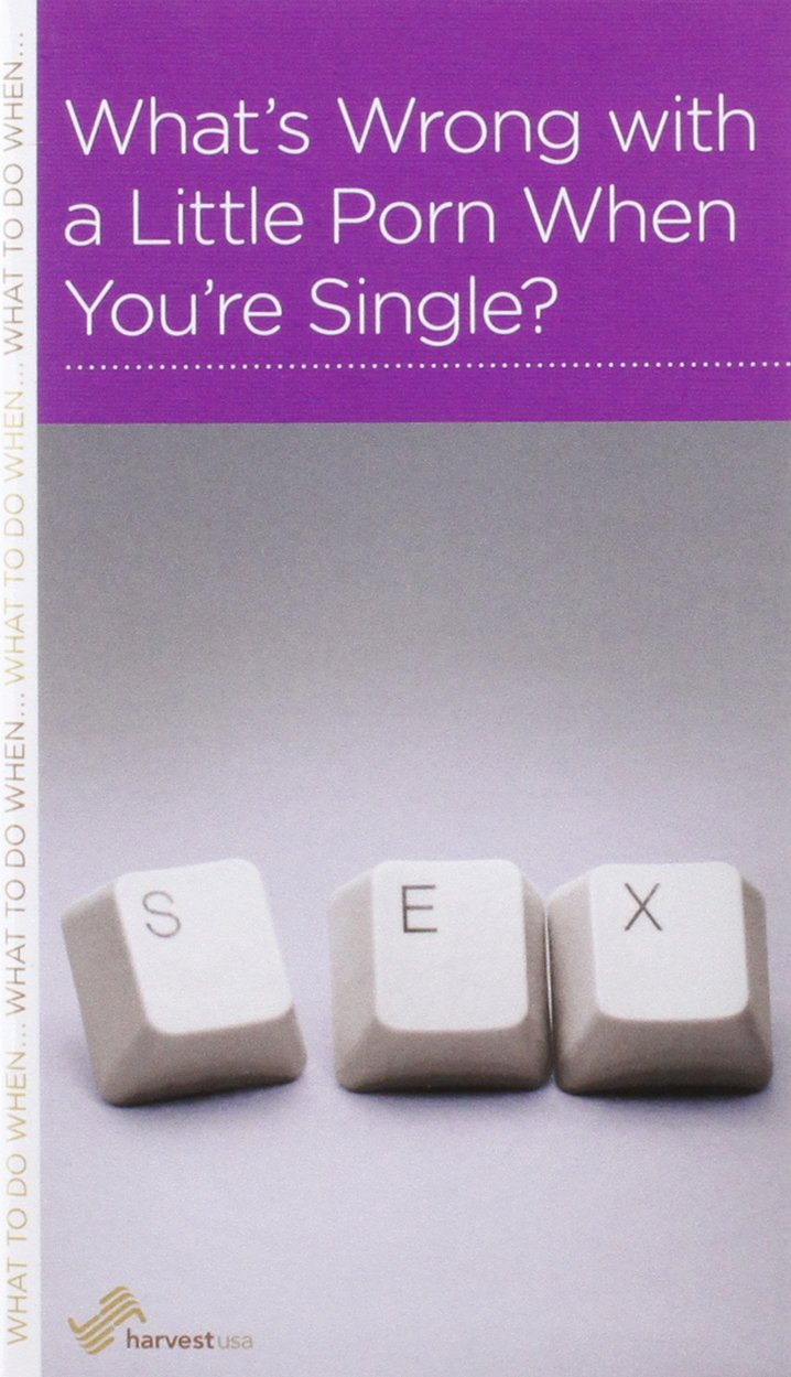 Whats Wrong with a Little Porn When Youre Single? PDF