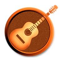 Guitar Transport